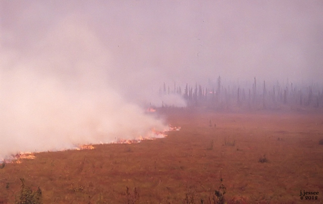 Fire spreading across the tundra