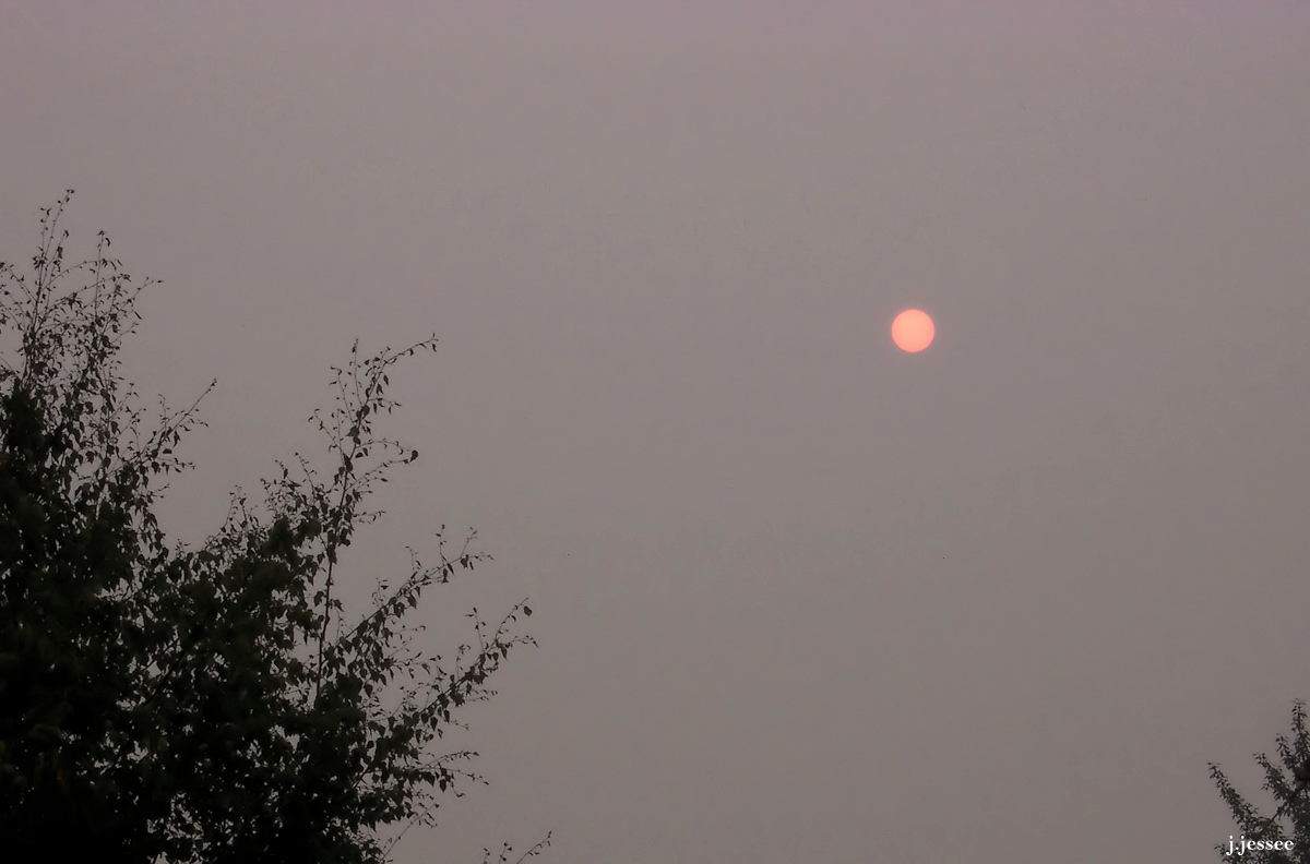 Looking For Alaska Smoke: Past Smoky Days In Alaska « The Jack Jessee Blog