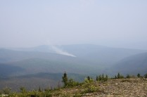 Forest fire, courtesy of a lightning strike the night before.