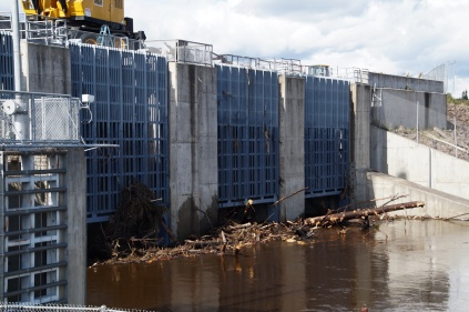 This is the side of the Chena River floodgates where water is building up and you can see tons of debris that has to be picked out by the crane. They sometimes offer it to the public for firewood.