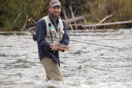 Another grayling.