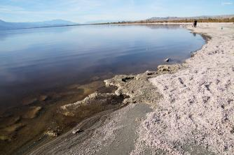 Salton Sea, California 2018