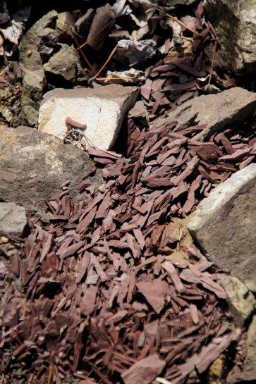 Weathered rocks.